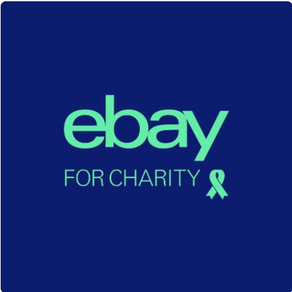 eBay for Charities supporting DFSGL