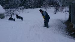 zima december 2014 - sneg=uživanje