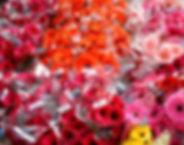 Carlos Floral IMG 3