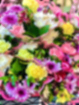 IMG_0738_edited.jpg