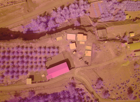 Precision Agriculture with NDVI and Agriculture Drones