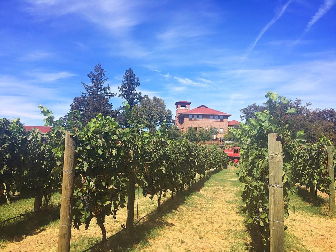 Bigham Knoll Campus Vines