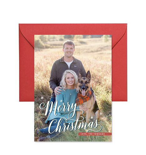 Toquam + Puppies holiday card