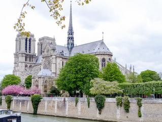 Notre Dame, An Homage APRIL 2021