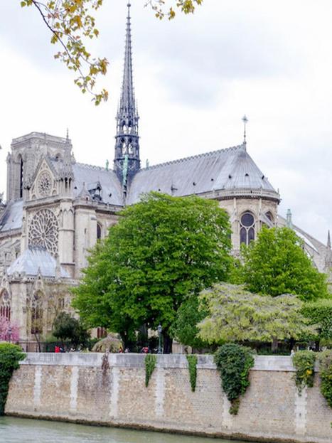 Notre Dame 3 - Willard.png