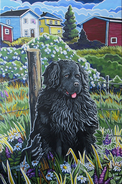 """Newfoundland Summer"" (2020) Giclee Prints: 18 X 12"""