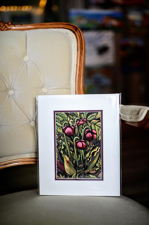 """Pitcher Plant"" 5X7 Matted Print (Reilly Fitzgerald Artist)"
