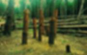 pevnosť_walla1.jpg