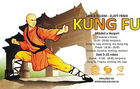 škola šeliem zlatý fénix kung fu devínsk