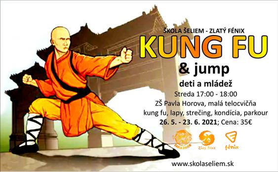 kung fu a parkour devínska nová ves.JPG