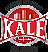 kale-guvenlik-alarm-sistemleri-logo-C762