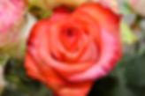 Trauerfloristik von Les Fleurs aus Bad Honnef
