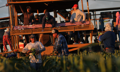 SB21-087: There's a push to give Colorado's agricultural workers more protections and better pay.