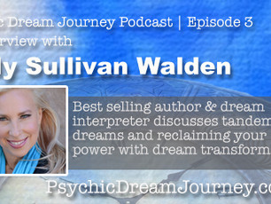 Podcast episode #3 with Kelly Sullivan Walden