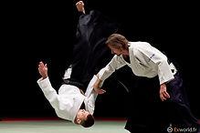 Aikido dojo sacamp