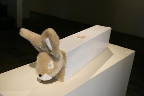 """'Bunny Box, 4.25x5.5x30"""", 2009..jpg"""
