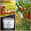 Thumbnail: Apple Harvest Classic Double Wick Candle