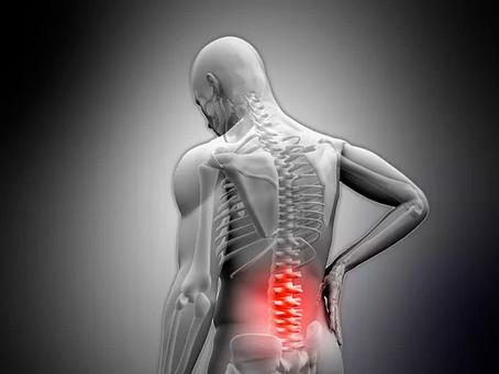Dores na coluna são evitáveis | CTC-MS
