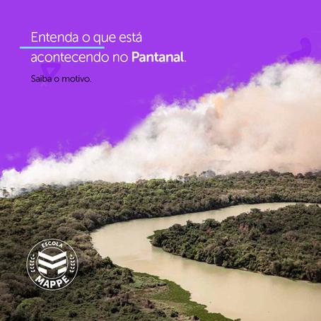 Entenda o que está acontecendo no Pantanal | Escola Mappe