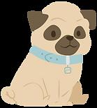 Visita Pet - Cachorro