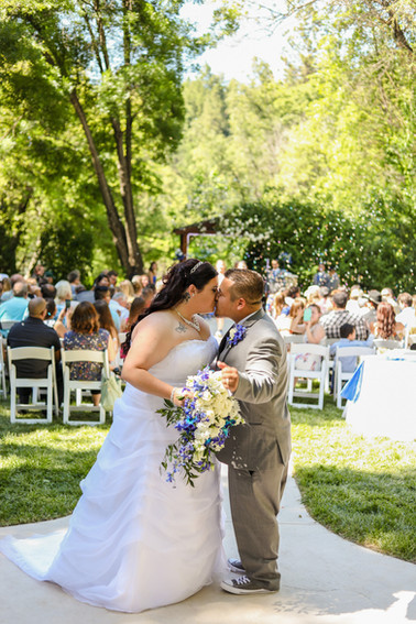 High Sierra Iris Wedding Gardens