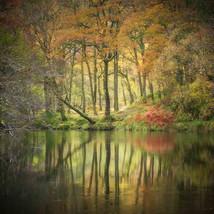 Borrowdale Tales by Simon Turnbull