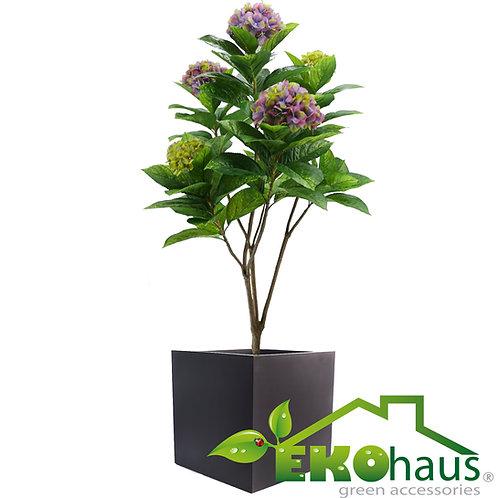 Hortensia con flor grande