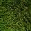 Thumbnail: EKO GRASS 35