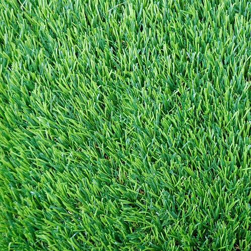 EKO GRASS 40