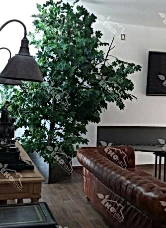 colocación de árbol-3.png