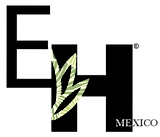 Logo EH.png