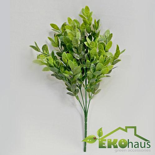 Rama eucalipto Verde limón