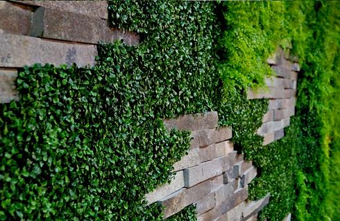 muro verde con piedra natural