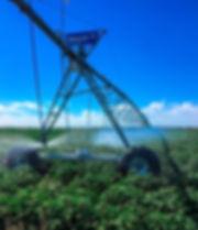 Irrigator Construction