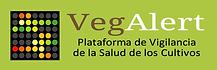Logo Vegalert_2_VECTOR.fw.png