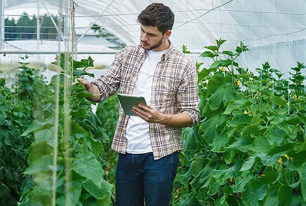 Joven agricultor invernadero_1