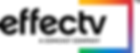 Effectv_logo_designation_TM_color_rgb[2]