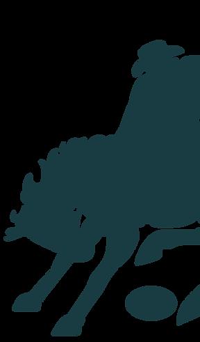 Stockman Rugby Logo