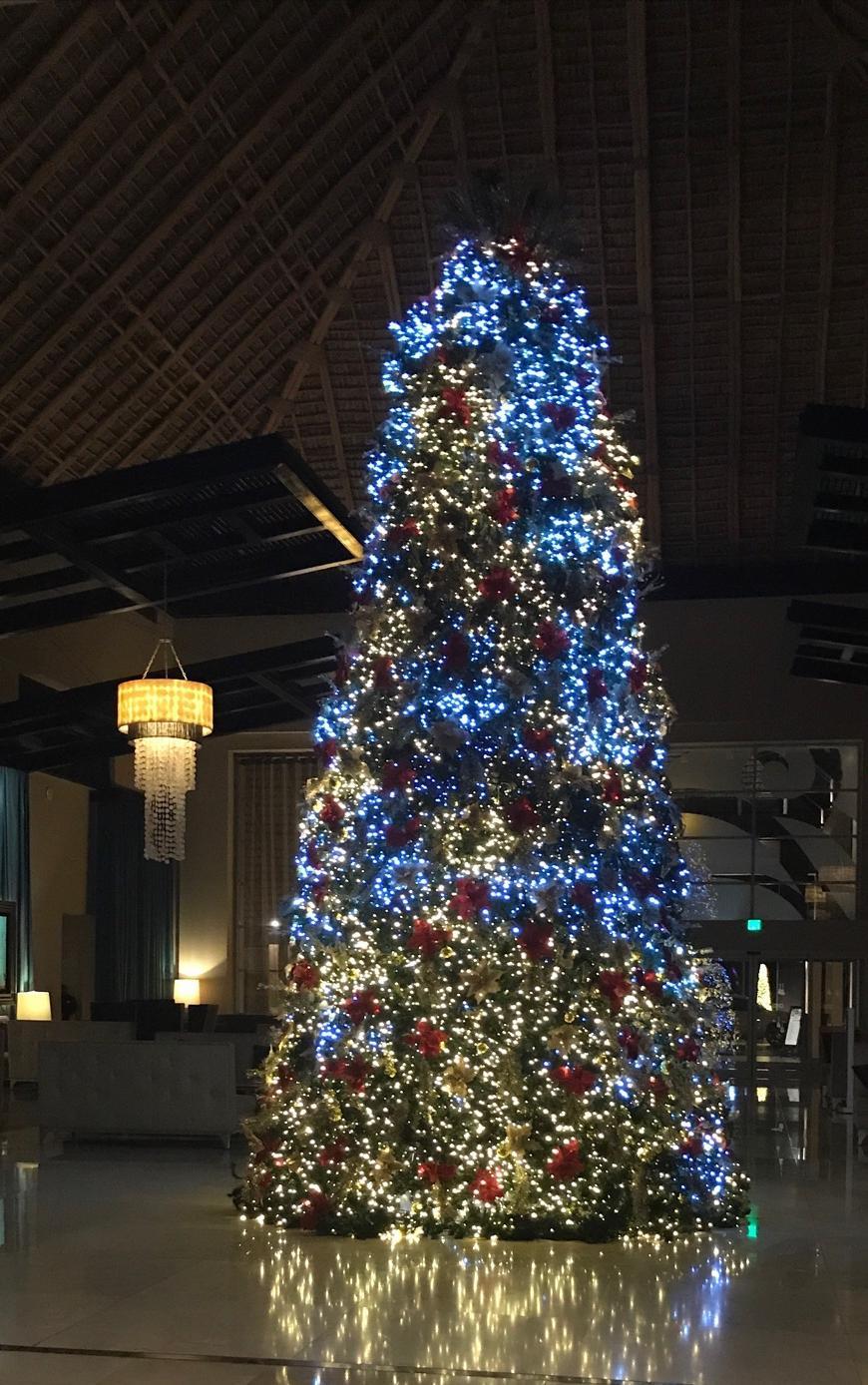 Christmas at the Hard Rock Hotel