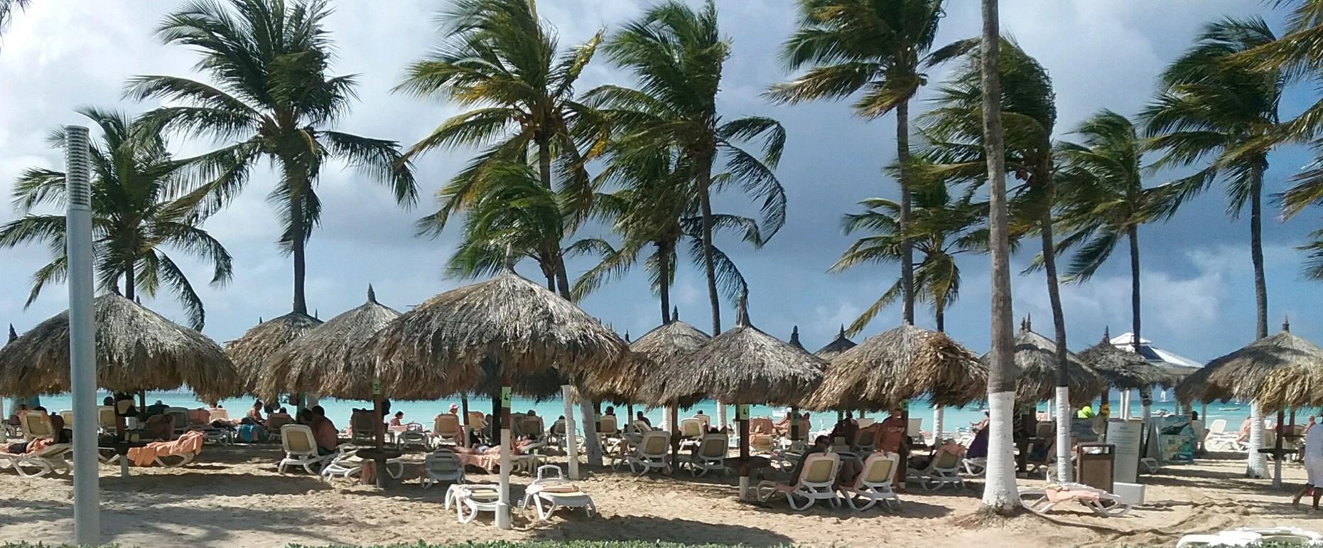 Aruba Winners2