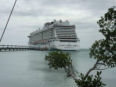 sue harrod cruise