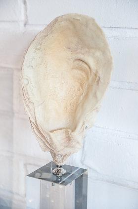 Figura Piedra Concha en Base de Acrilico