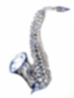 The Saxy Spine