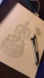 Violin Anatomy