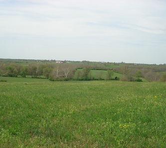 Millersburg-Cynthiana Road (Hwy 1879).JP
