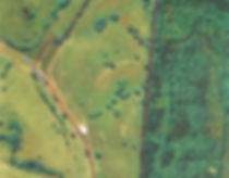 Kendall Branch Road aerial.jpg