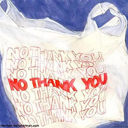 no-thank-you-bag-600x600.jpg