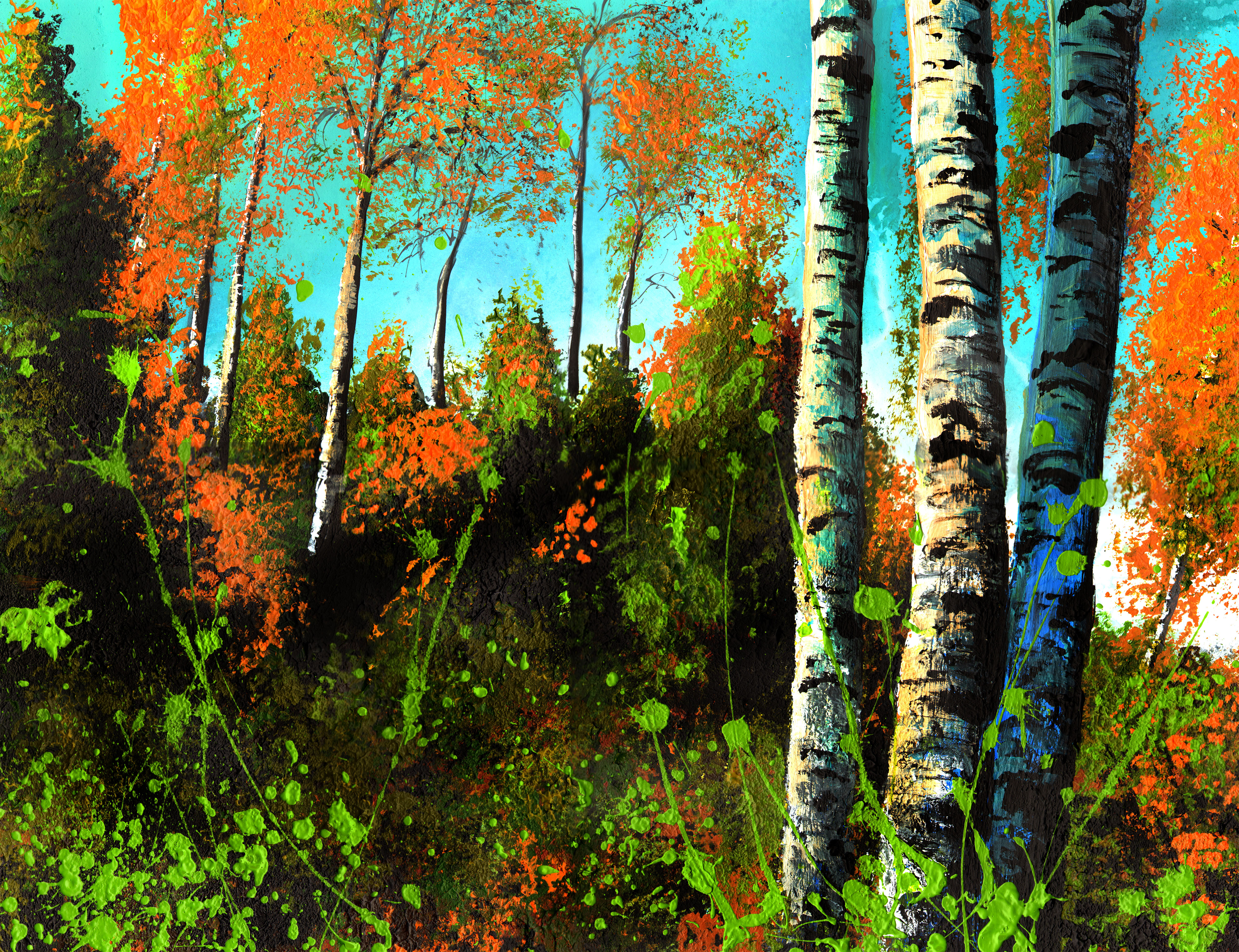 Birches, late afternoon