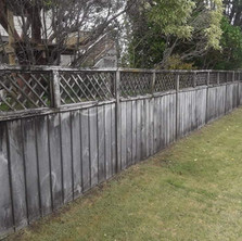 Keen Kiwi Blokes - Fence Cleaning Before