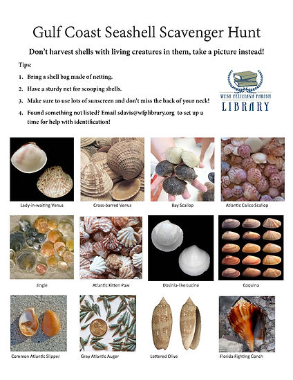 Seashell Scavenger Hunt_Page_1.jpg